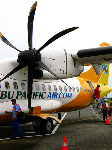 cebu pacific large