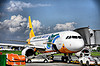 Near Rumble at Cebu Pacific in Iloilo:The Conclusion!