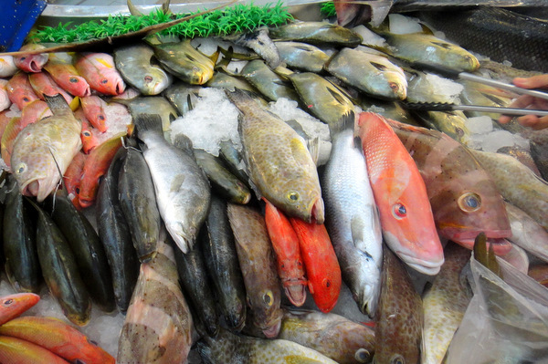 Something 39 S Fishy At Sm City In Iloilo