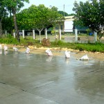 Australian Aid Continues to Improve Roads in Guimaras, the Philippines