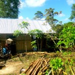 Do You Want to Build the Best Nipa Hut in the Philippines?
