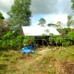 Nipa Hut Progress on our New Property in the Philippines