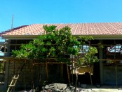 a look at our new roof in the Philippines