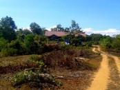 the path to our new home in the Philippines