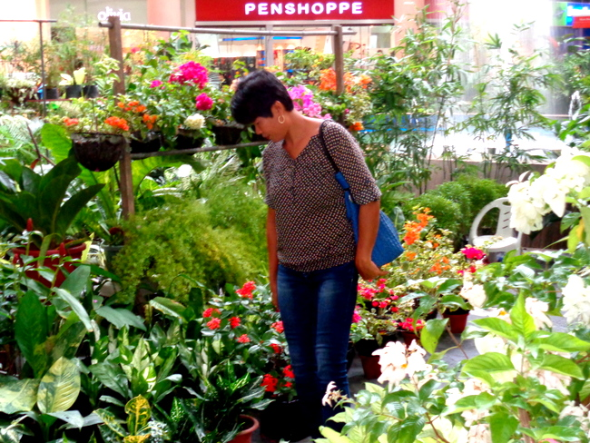 my lovely asawa checking out robinsons plant sale in iloilo