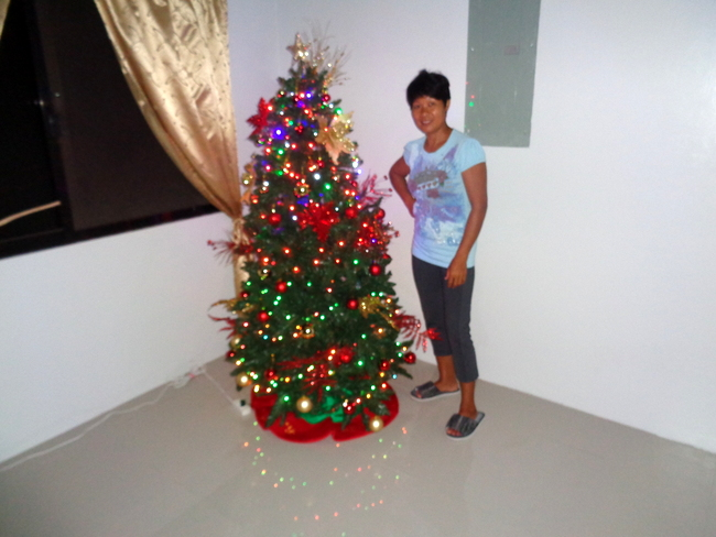 my lovely spouse and our christmas tree in the philippines