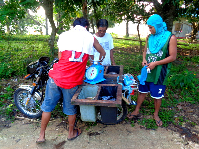 our local fish mongers in guimaras, the philippines