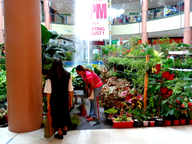 plant sale at robinsons mall iloilo city