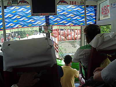dimple star bus guimaras to manila