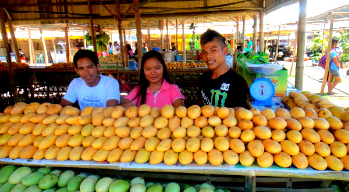 sweetest mangoes guimaras