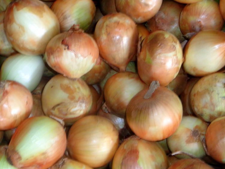 Onions The Super Iloilo City - Save Money at Iloilo's Surprising Super Market