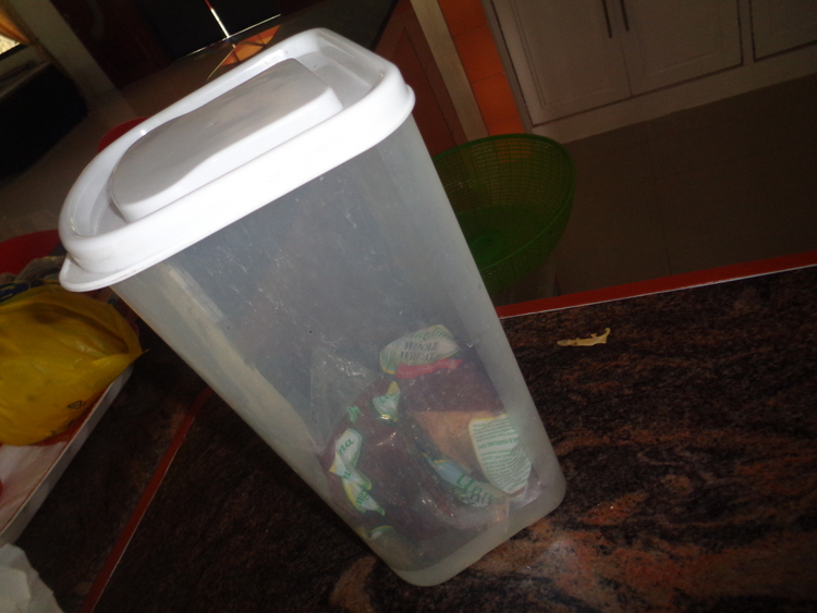 lizard proof bread container - Dead Lizard Found in Angelina Whole Wheat Bread