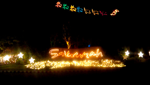 Merry Christmas from Savannah in Iloilo