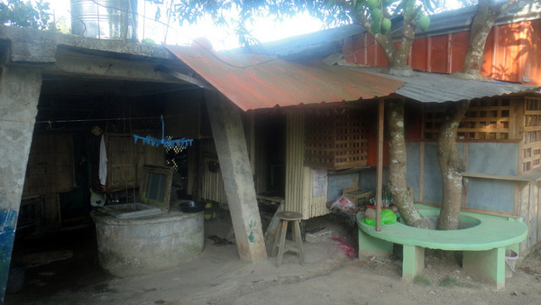 The well by the nipa hut