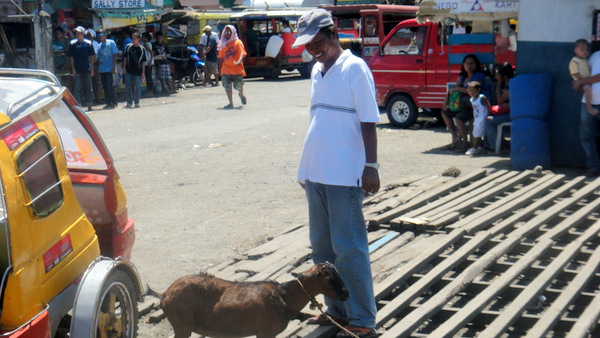 Bintoy and goat at the Jordan Wharf in Guimaras