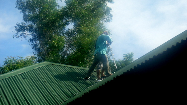 Up on the roof at the farm in Guimaras
