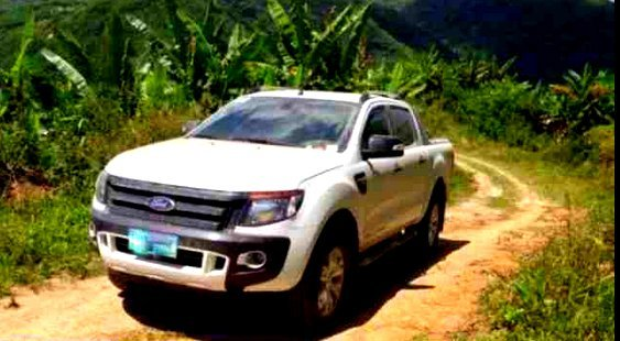 ford wildtrak white