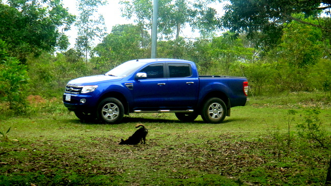 Our new Ford Ranger XLT