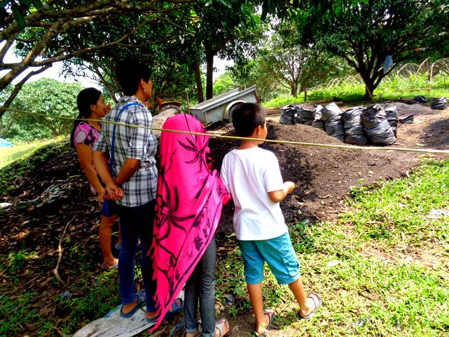 compost soil at wonder farms, guimaras