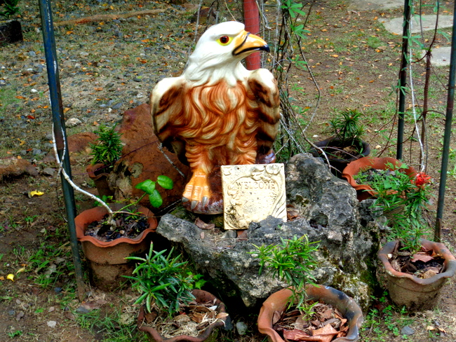 eagle stands guard at neptune pittman's gardens