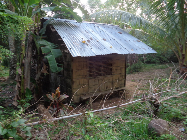 large home in guimaras philippines