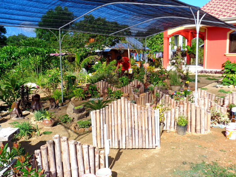 longshot of our new garden in the Philippines