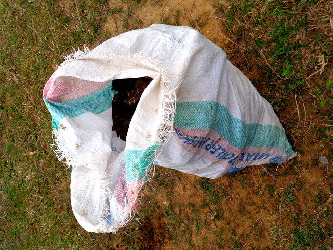 sack of cow poop from guimaras philippines