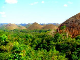the chocolate hills bohol