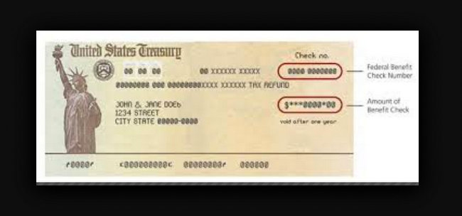 us treasury check