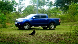 Philippines Ford Ranger Woes: Engine Light Stays On