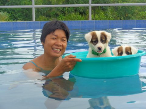 My asawa and Squeaky in the pool 480x360 - Philippines Pampered Perky Pups