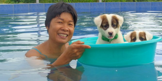 My asawa and Squeaky in the pool 668x334 - Philippines Pampered Perky Pups