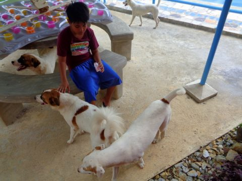 Jorealle and the pups 480x360 - Our Filipino Nephew Passed on Old-School Circumcision