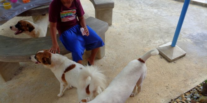 Jorealle and the pups 668x334 - Our Filipino Nephew Passed on Old-School Circumcision