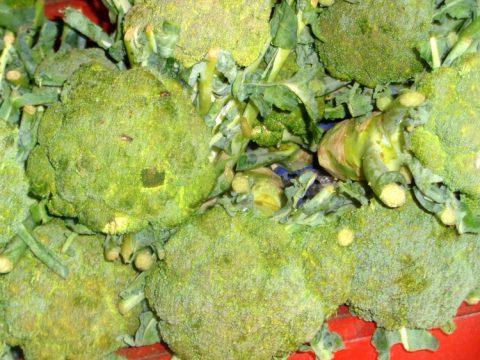 Fresh veggies The Super Iloilo City 480x360 - Save Money at Iloilo's Surprising Super Market