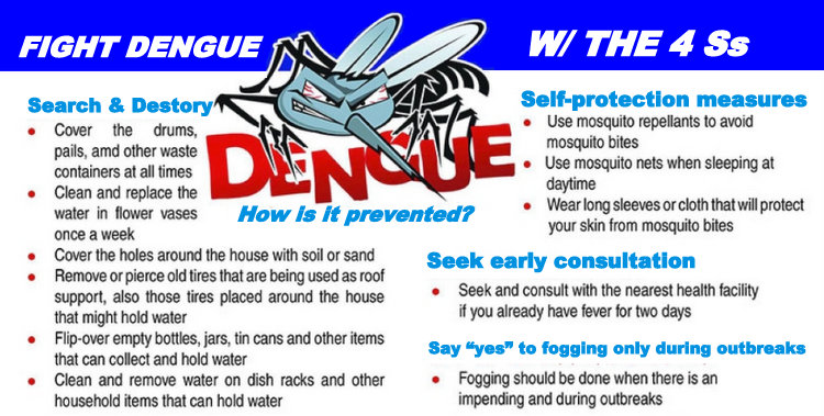Public reminded of 4S strategies vs dengue SUNSTAR - Dengue Exceeds Epidemic Threshold