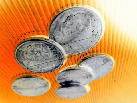 six pesos senior smiles 480x360 - Six Pesos Senior Smiles