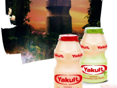 Whats in a bottle Yakult 480x360 - Yakult Shortage & Dengue Fever