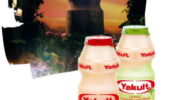 Whats in a bottle Yakult 564x334 - Yakult Shortage & Dengue Fever