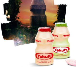 Yakult Shortage & Dengue Fever